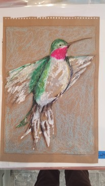 Hummingbird Study oil pastel, acrylic and in on paper (not matted to 18″x 24″ $45