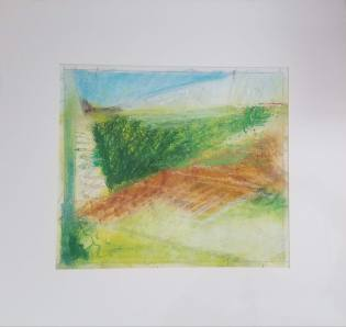 Landscape Study #9 oil pastel, graphite on paper 16 x 16″ matted $40