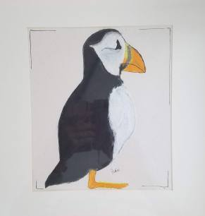 Puffin oil pastel and ink 13 x 13″ matted $40